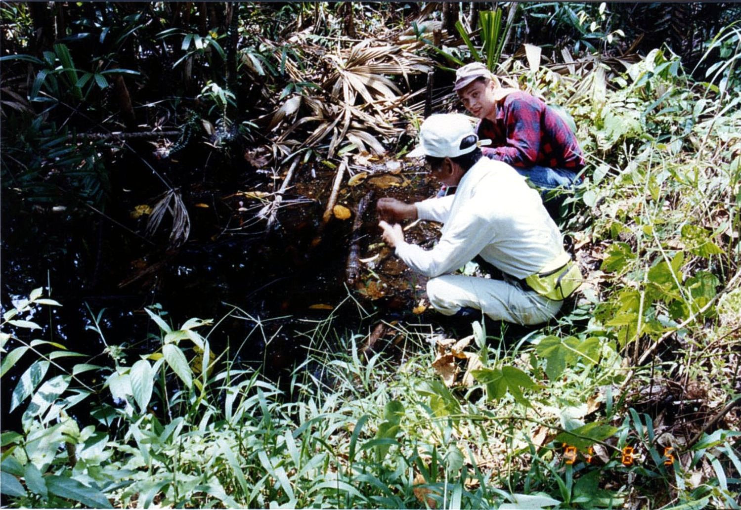 Prof. Dr Eitaro Wada, Dr Mariusz-Orion Jędrysek, Sampling In Tropical Forest, Tajlandia 1991-08-05